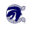 Boerne Chargers Logo